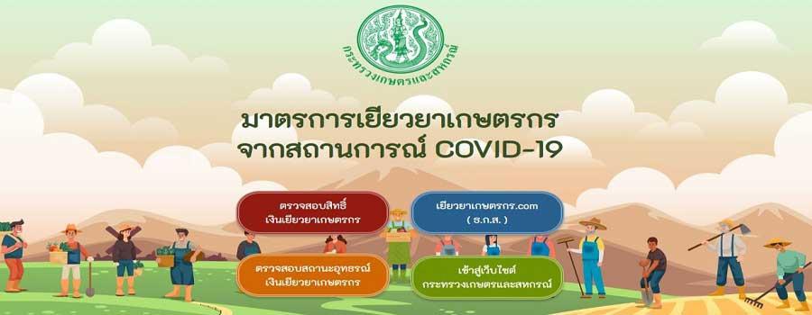 มาตรการเยียวยาเกษตรกร จากสถานการณ์ COVID-19